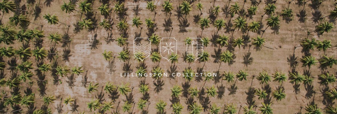 Lillingston Collection